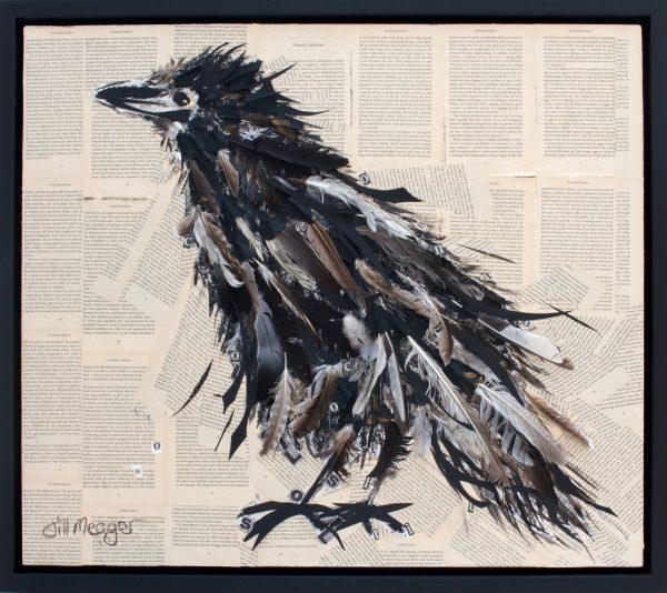 Darwin's birds 1