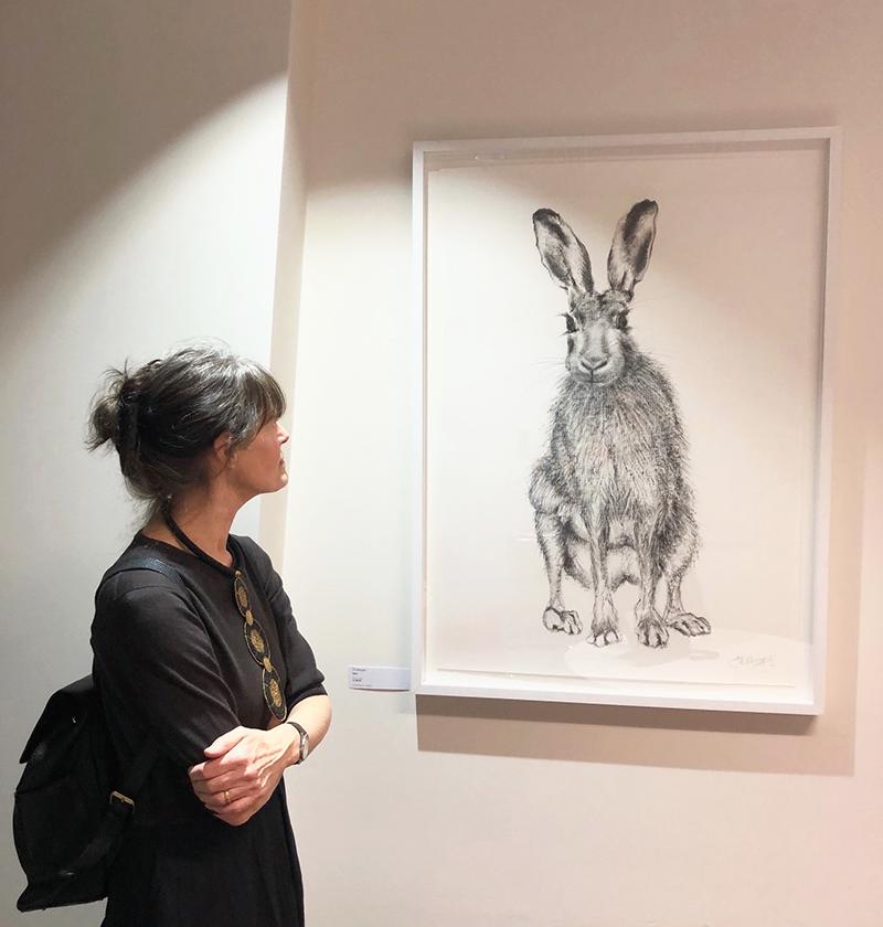 Jill, Hare, Shard