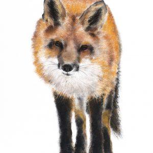 Fox 3 – Sold at The Borders Art Fair