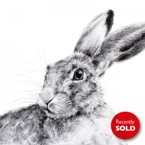 Hare 22 – The Borders Art Fair