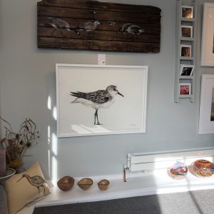 Sanderling – the shy little shoreline bird. For sale at The Ashburn Gallery