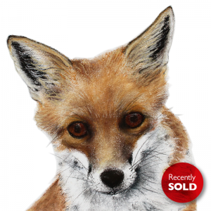 Fox cub 4 – small drawing series